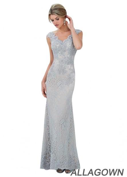 Elegant V Neck Lace Mother Of The Bride Dresses