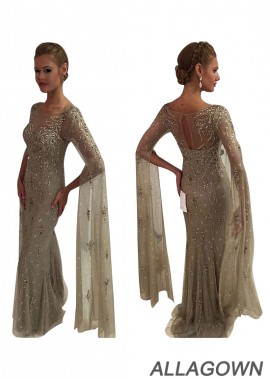Mother Of The Bride Dress Evening Dress With Beads and Sleeves
